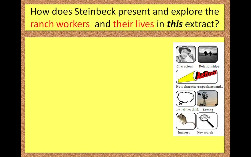 Steinbeck 1